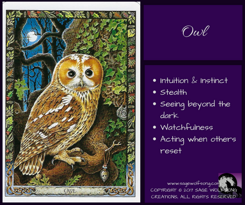 sage wolfsong creations weekly wisdom blog graphic owl oracle