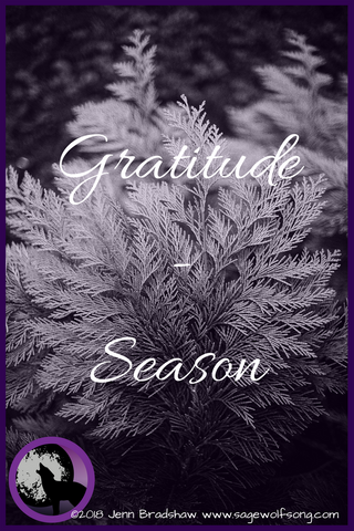 Sage Wolfsong blog post - 40 Days of Gratitude series - Seasons as related to disability