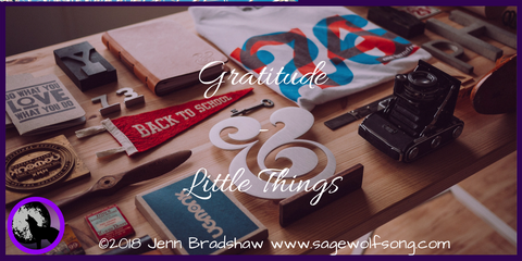 40 Days of Gratitude - from the perspective of disability - Gratitude for the little things in my life