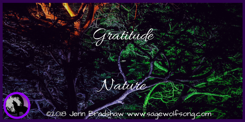 40 Days of Gratitude Blog Challenge - I'm grateful for the cycles in Nature because they remind me to honor my own cycles.