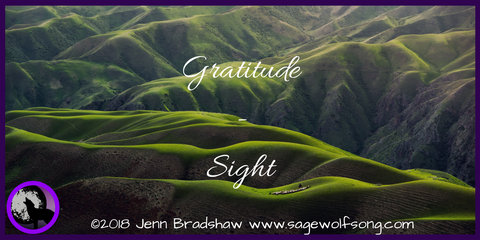 Sage Wolfsong blog post - 40 Days of Gratitude - Sights and Disability