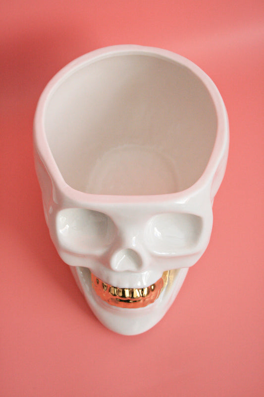 Porcelain skull container with gold teeth