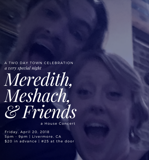Two Day Town House Concert - April 20, 2018(TICKET)