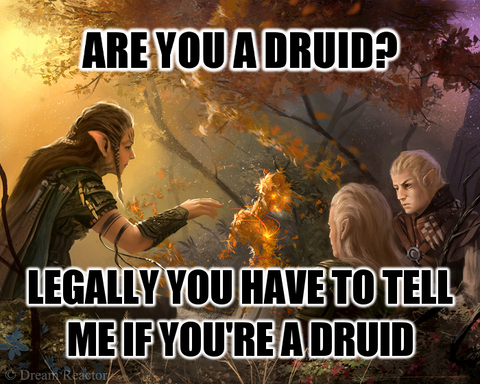 Are you a druid?  Legally, you have to tell me if you're a druid.