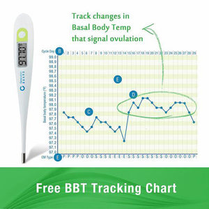 Clinical Basal Thermometer