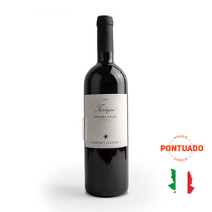 Domenico Clerico Trevigne Barbera d´Alba DOP 2010 750ml