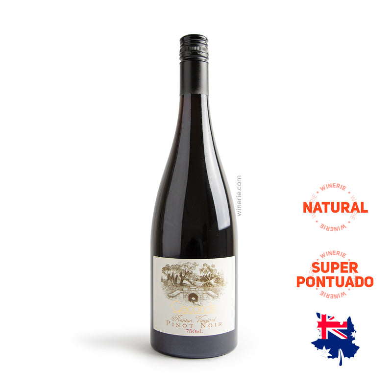 "Giaconda Nantua Vineyard ""Gravel Clay Soil"" Pinot Noir 2005 750ml"