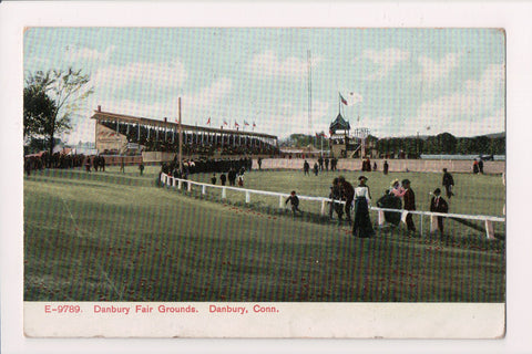 CT, Danbury - Fair Grounds, @1910 Langsdorf postcard - 400106