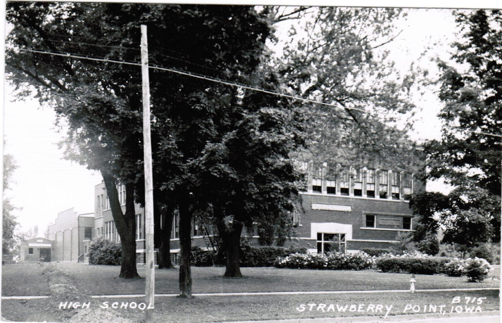 IA, Strawberry Point - High School - RPPC - D04308
