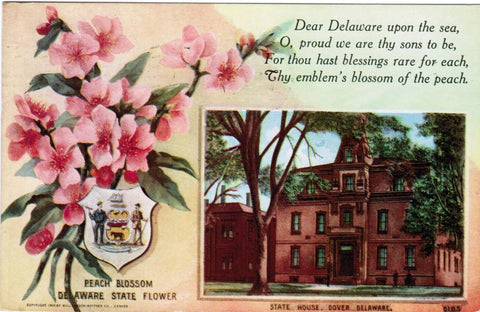 DE, Dover - Peach Blossom State Flower - Williamson Haffner card - w00968