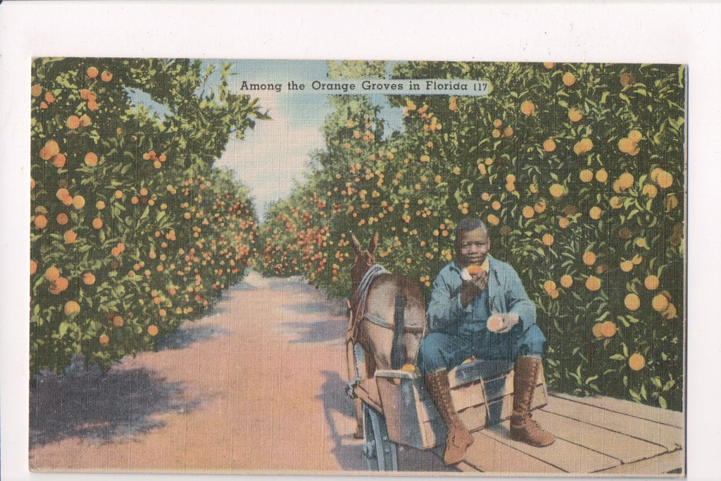 Black Americana - Worker boy in the orange grove @1945 - A06539
