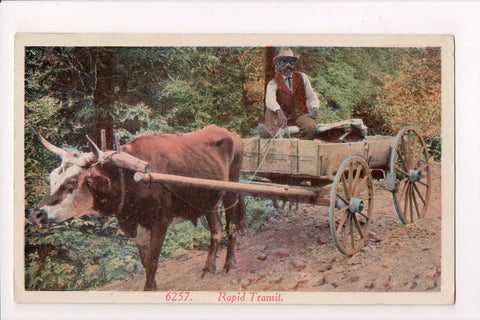Black Americana - Rapid Transit, Black man on cart driven by an ox - C08490