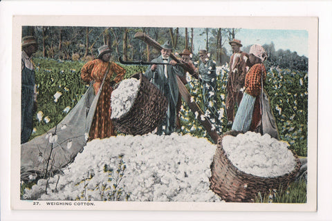 Black Americana - Weighing Cotton in field with hand scale - E10559