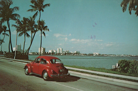 FL, West Palm Beach - from Royal Palm Bridge, great VW bug car - 505116