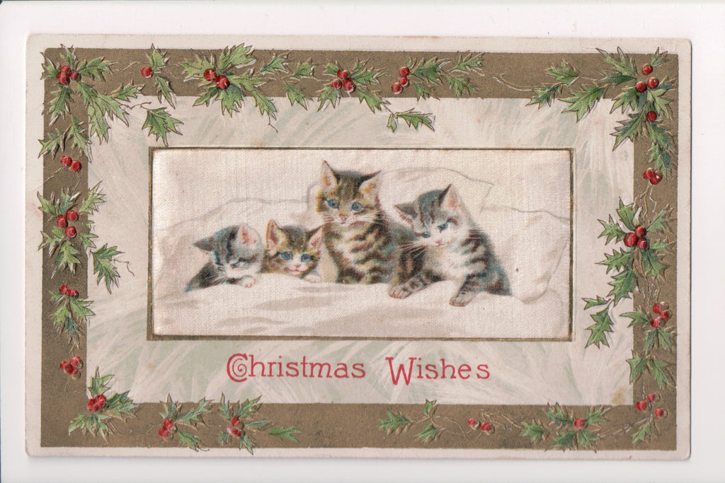 Animal - Cat or cats postcard - cat family in bed - silk Winsch back - 400266