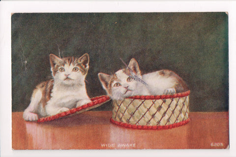 Animal - Cat or cats postcard - 2 kittens - in and around basket - @1914 - 500597