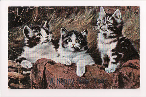 Animal - Cat or cats postcard - A Happy New Year (kittens) @1909 - 505018