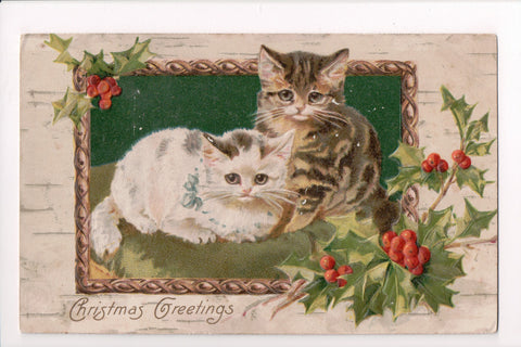 Animal - Cat or cats postcard - 2 kittens - Winsch Back - @1907 - 700020