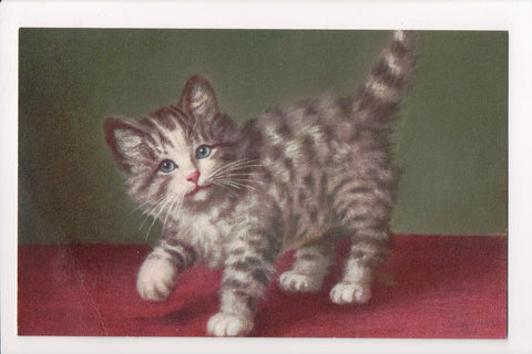 Animal - Cat or cats postcard - Artist signed, Stehli card - A06746