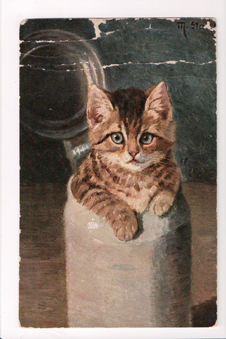 Animal - Cat or cats postcard - Gray eyed brown kitten in milk can - A06761