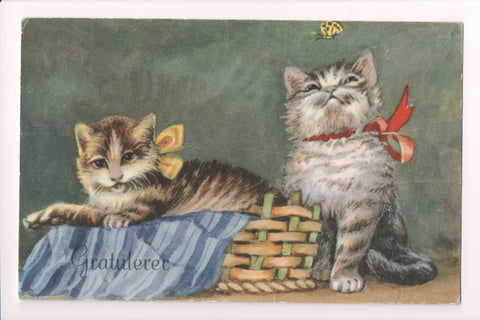 Animal - Cat or cats postcard - GRATULERER, kittens, butterfly - A06762