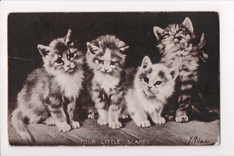 Animal - Cat or cats postcard - FOUR LITTLE SCAMPS - A06768