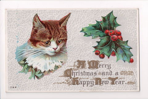 Animal - Cat or cats postcard - Christmas, brown and white - A06776