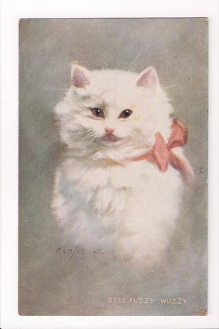 Animal - Cat or cats postcard - FUZZY WUZZY, Kenyon signed - A06778