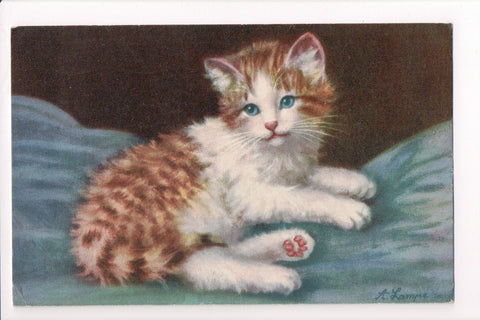 Animal - Cat or cats postcard - blue eyed orange and white - A06783