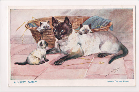 Animal - Cat or cats postcard - A HAPPY FAMILY (Siamese cats) - A12137