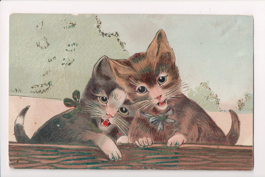 Animal - Cat or cats postcard - Pair of kittens singing - American Art Works - C