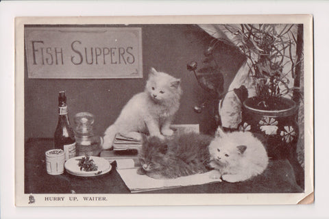 Animal - Cat or cats postcard - HURRY UP, WAITER - Tuck Happy Catland - MA0107