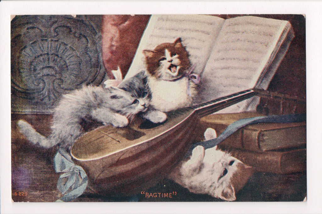 Animal - Cat or cats postcard - kittens playing music and singing - SH7030