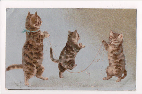 Animal - Cat or cats postcard - Anthromorphic kittens jumping rope - SH7119
