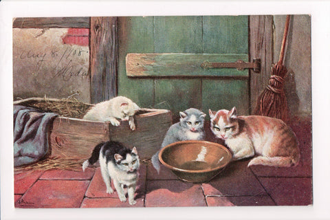 Animal - Cat or cats postcard - few near an empty bowl - SH7275