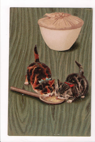 Animal - Cat or cats postcard - 2 multi color kittens licking a wooden spoon - S