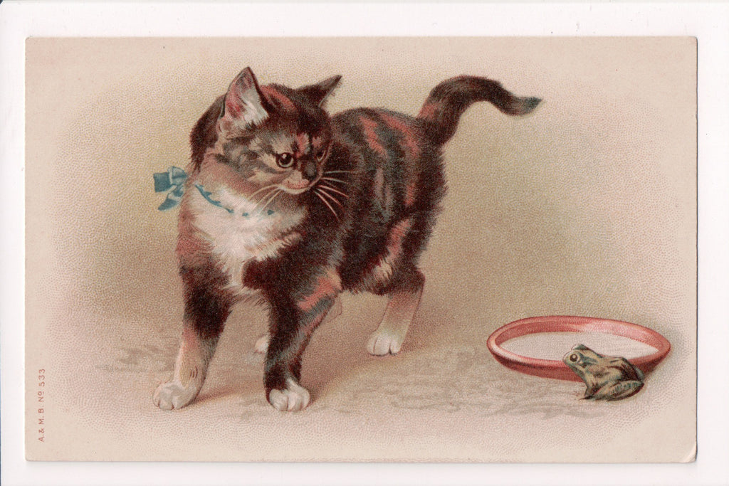 Animal - Cat or cats postcard - Kitten looking at frog - A and MB - D08068