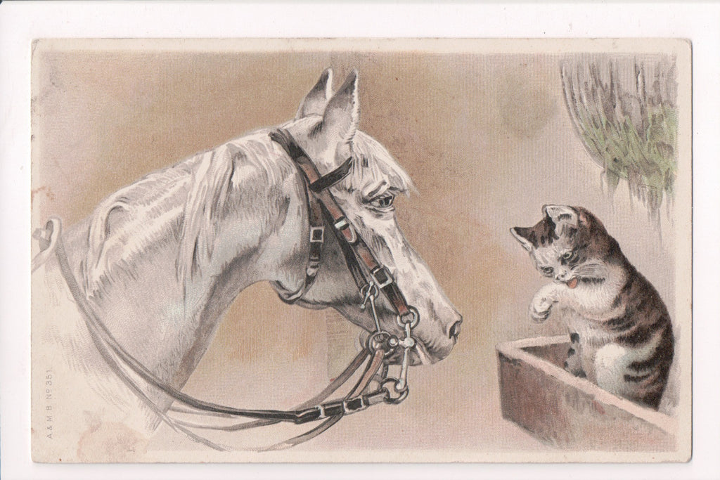 Animal - Cat or cats postcard - white horse, kitten - A and MB - F09005