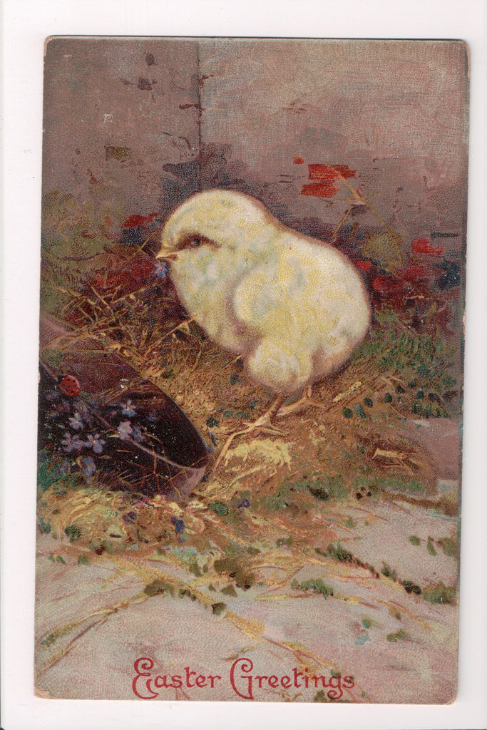 Easter postcard - large, fluffy chick eyeing a lady bug - D18009