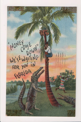 Black Americana - boy treed by alligator postcard - G18148