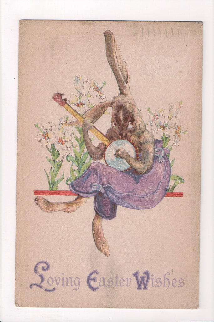 Easter - Humanized fantasy dressed rabbit, hare playing instrument - B17123