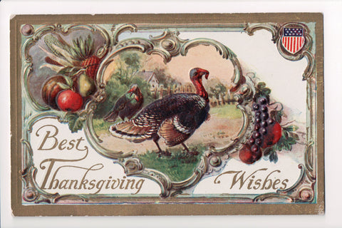 Thanksgiving - Best Wishes - patriotic shield, turkeys, etc - A06676