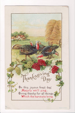 Thanksgiving - Day postcard - turkeys, grapes, hay - w05068