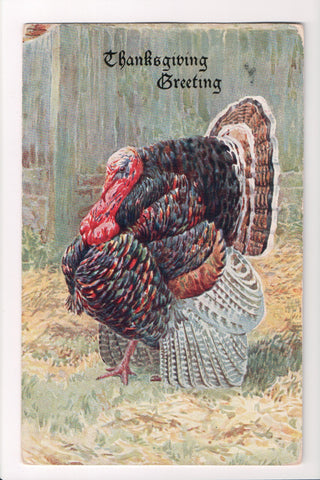 Thanksgiving - Greeting - Turkey close up - E Nister - w05080