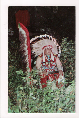 Indian postcard - Winnebago Chief Yellow Thunder in regalia - 800125