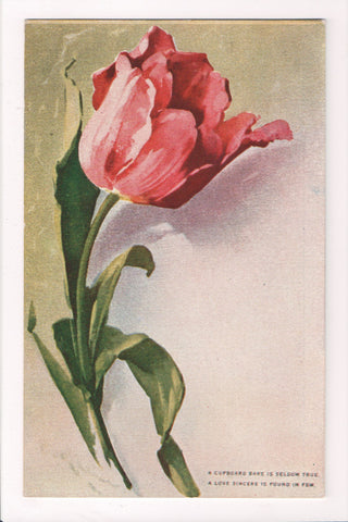 Greetings - Misc - Artist signed C Klein - pink tulip flower postcard - S01437