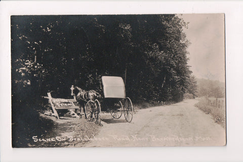 MA, Bernardston - Horse and Buggy at water station just off road - RPPC - BP0009