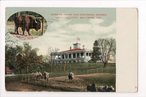 MD, Baltimore - Druid Hill Park, Mansion House, Buffalo, camels etc - w01491