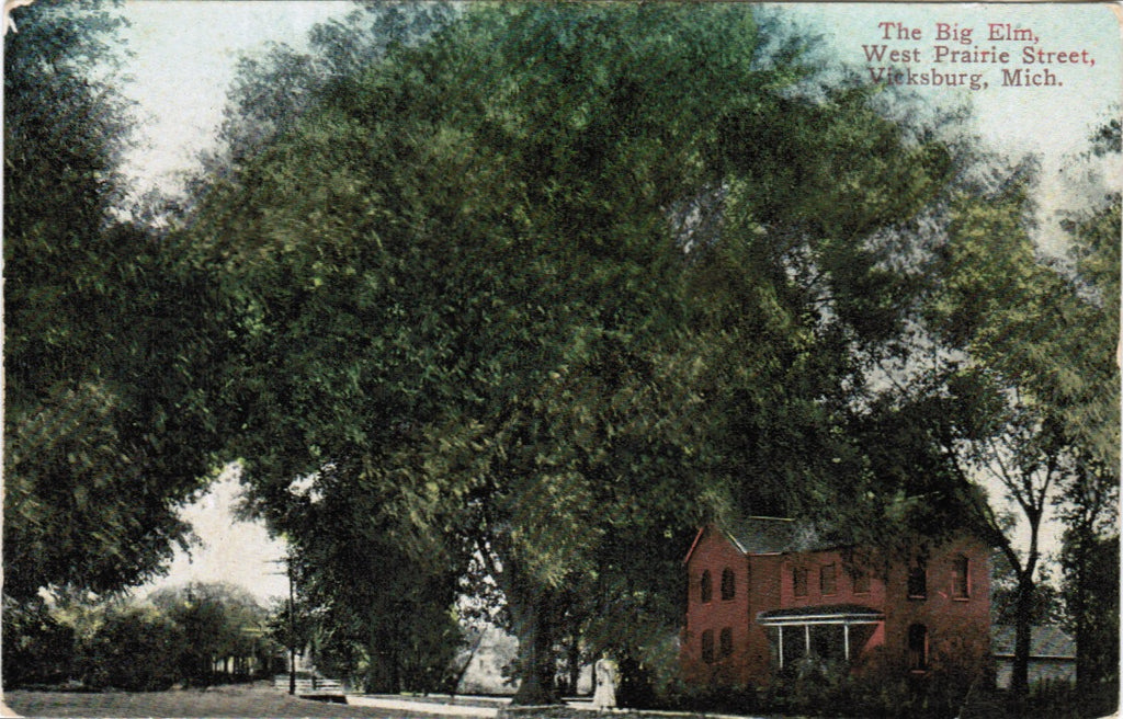 MI, Vicksburg - West Prairie Street and Big Elm postcard - C08176