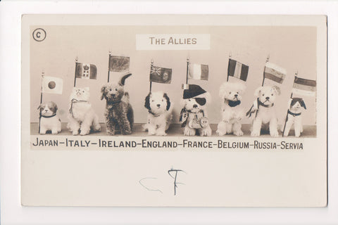 MISC - Military - The Allies - 8 dogs along with flags - RPPC - C06720
